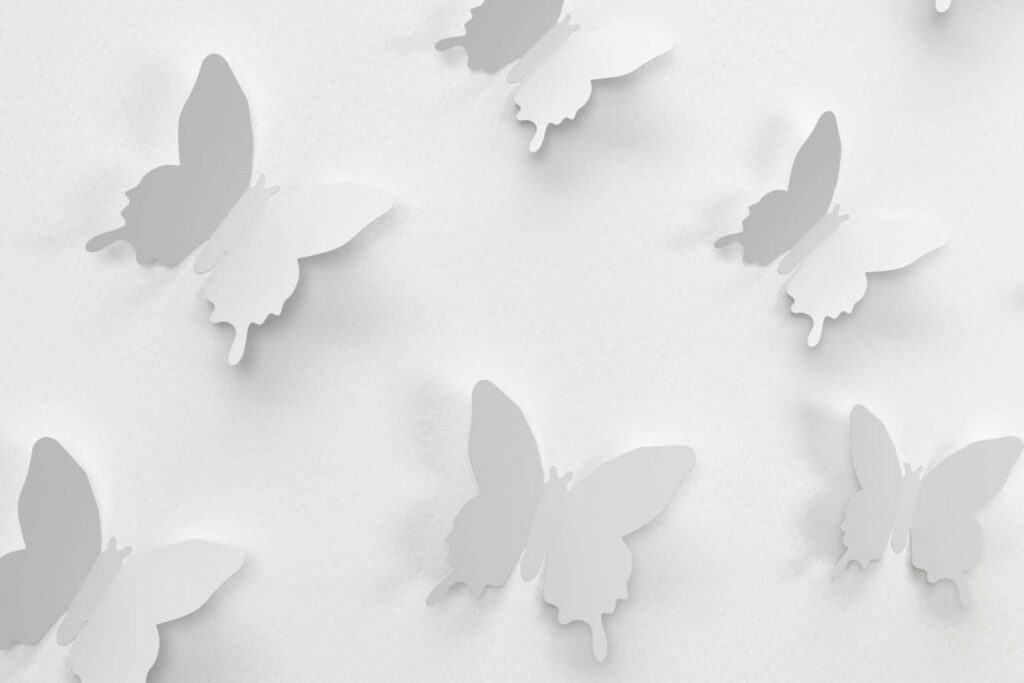 3D White butterfly art