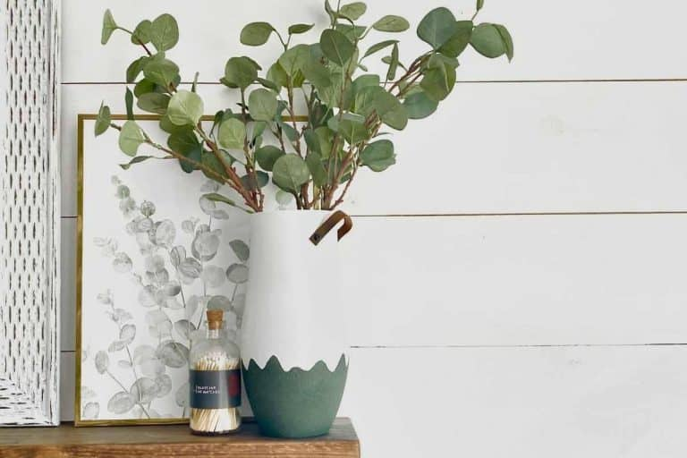 DIY Vase With Handles – Easy
