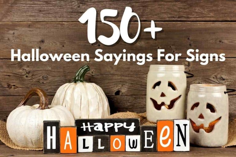 150+ Halloween sayings for signs (2021)